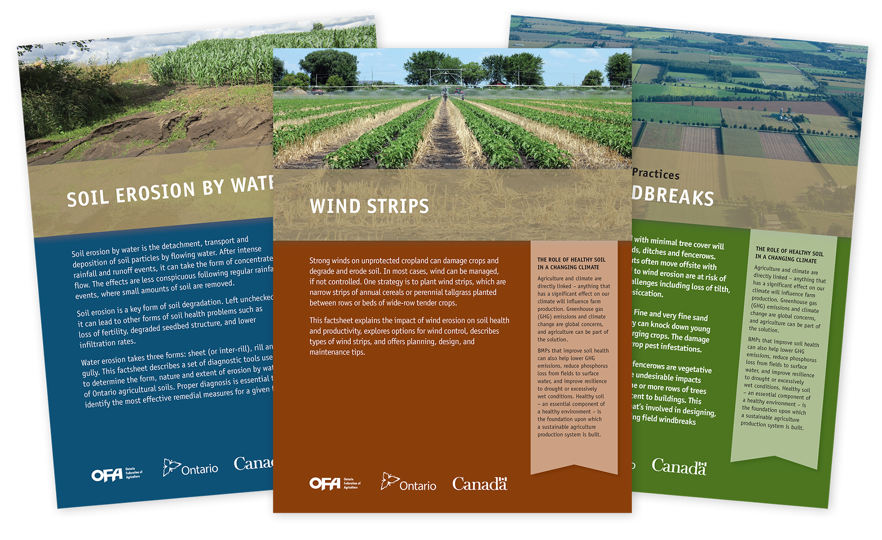 Ontario federation of agriculture neglia design for Soil information in english